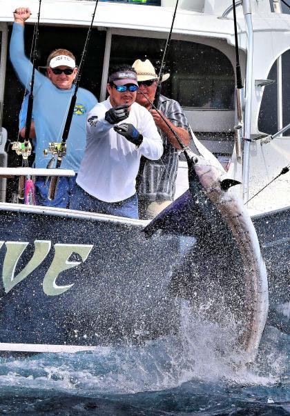 IGFTO Observer Chuck Evers calls a sailfish release in Guatemala